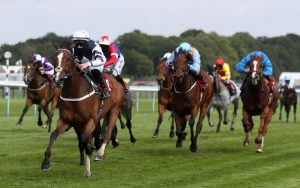 3 Horse Betting Tips